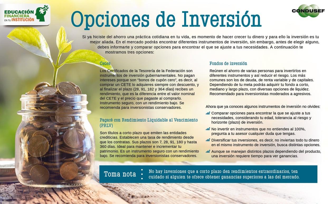 Opciones de inversión